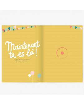 Cahier pour futur maman : journal humoristique
